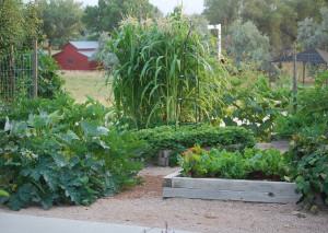 Superbe Conservation Garden Park